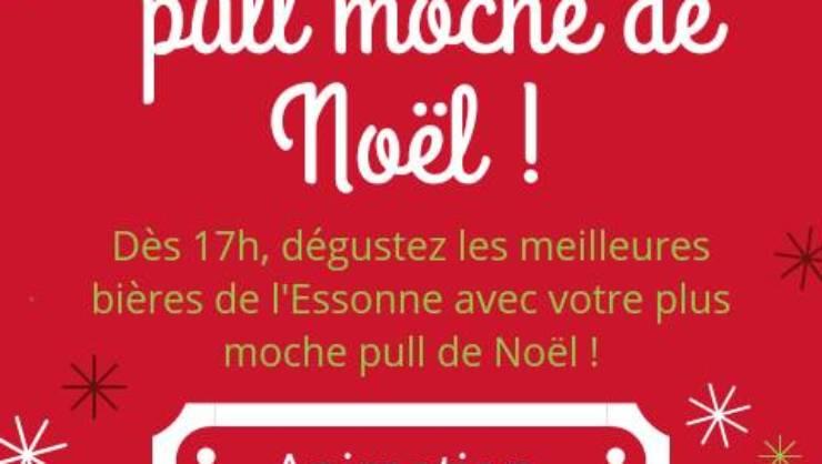PULL MOCHE DE NOEL